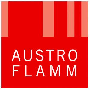 maison-et-tendances-austroflamm-2